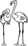 Due fenicotteri Immagine Stock Libera da Diritti