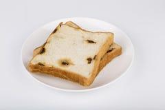 Due fette di pane Immagine Stock