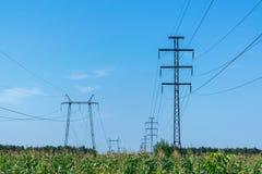 Due file dei piloni Nella priorità alta un campo di cereale Immagine Stock