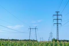 Due file dei piloni Nella priorità alta un campo di cereale Fotografie Stock Libere da Diritti