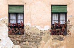 Due finestre con i POT Fotografie Stock Libere da Diritti