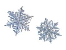 Due fiocchi di neve isolati su fondo bianco Immagini Stock