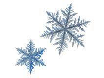 Due fiocchi di neve isolati su fondo bianco Fotografia Stock Libera da Diritti