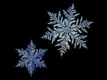 Due fiocchi di neve isolati su fondo nero Fotografie Stock Libere da Diritti