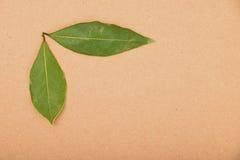 Due foglie della baia sulla carta kraft Fotografie Stock Libere da Diritti