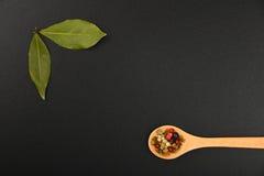 Due foglie e pepi della baia sulla lavagna nera Fotografie Stock Libere da Diritti