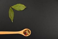 Due foglie e pepi della baia sulla lavagna nera Fotografia Stock Libera da Diritti