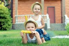 Due fratelli che si siedono sull'erba e mangiare pannocchia nel giardino immagine stock libera da diritti