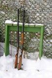 Due fucili Fotografia Stock