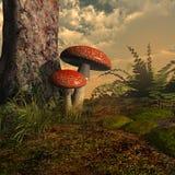 Due funghi Immagini Stock Libere da Diritti