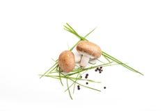 Due funghi del fungo prataiolo, fondo bianco, con prezzemolo, sale, pepe Fotografie Stock Libere da Diritti