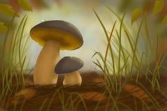 Due funghi nella foresta in erba Fotografia Stock Libera da Diritti