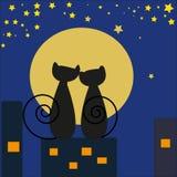 Due gatti che esaminano luna Immagini Stock Libere da Diritti