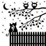 Due gatti che si siedono sul recinto Fotografie Stock