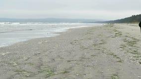 Due genti che camminano lungo la spiaggia di Prora Autumn Time archivi video