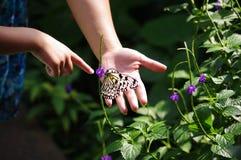 Due genti che indicano ad una farfalla Immagini Stock Libere da Diritti