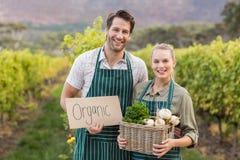 Due giovani agricoltori felici che tengono un segno e un canestro delle verdure Fotografia Stock Libera da Diritti