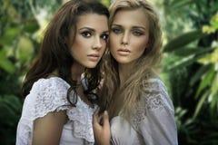 Due giovani bellezze fotografia stock