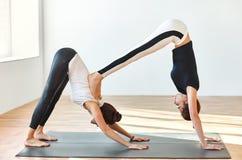 Due giovani donne che fanno il cane discendente del doppio di asana di yoga Fotografia Stock