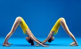 Due giovani donne che fanno il cane orientato verso il basso di asana di yoga Fotografie Stock