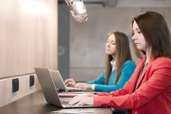 Due giovani donne che lavorano ai computer al contatore di legno di Antivari Fotografie Stock Libere da Diritti