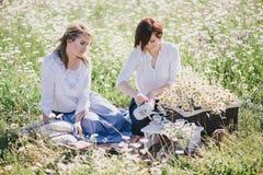 Due giovani donne graziose che hanno picnic con tè nel campo della camomilla Fotografie Stock Libere da Diritti