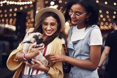 Due giovani signore che sorridono e che esaminano gentilmente il cucciolo fotografia stock libera da diritti