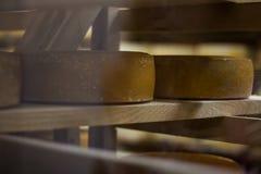 Due grandi dischi piani rotondi di formaggio sullo scaffale di legno per invecchiare Colpo oblungo orizzontale Macchia sulla part fotografia stock