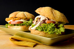 Due hamburger saporiti Fotografie Stock Libere da Diritti