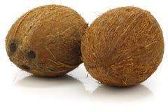 Due intere noci di cocco Fotografia Stock