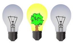 Due lampadine ordinarie ed una un albero Fotografia Stock