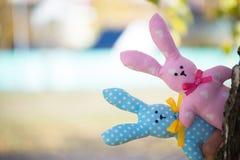 Due lepri del tessuto, rosa e blu, danti una occhiata fuori da dietro un albero di betulla Giocattoli fatti a mano immagine stock