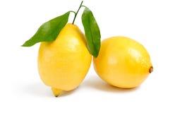 Due limoni con le foglie su bianco Immagini Stock