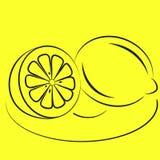 Due limoni su una zolla. Immagine Stock