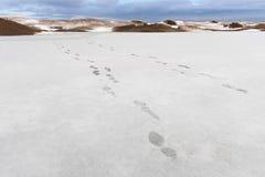 Due linee di orme nella neve che allunga nella distanza Fotografia Stock