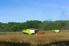 Due macchine agricole funzionano nel campo, mietitrici del grano funzionano nel campo, terreno agricolo Immagine Stock