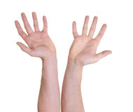 Due mani con le palme aperte Fotografia Stock Libera da Diritti