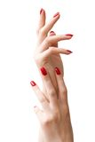 Due mani della donna Immagini Stock Libere da Diritti