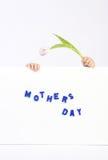 Due mani di infanzia che tengono bordo bianco con del testo un di madri blu il giorno e tulipano bianco e viola Immagini Stock Libere da Diritti