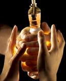 Due mani intorno ad una lampadina fotografia stock libera da diritti