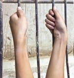 Due mani stanno afferrando la gabbia d'acciaio Fotografie Stock Libere da Diritti
