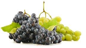 Due mazzi di uva rossa e bianca su bianco Fotografia Stock