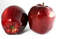 Due mele di rosso di lucentezza Immagine Stock Libera da Diritti