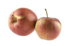 Due mele rosse isolate su bianco Fotografia Stock