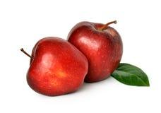 Due mele rosse mature su un fondo bianco Fotografia Stock Libera da Diritti