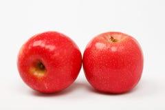Due mele rosse sopra bianco Immagine Stock Libera da Diritti