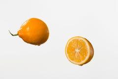 Due metà del limone e gocce di acqua su fondo bianco Fotografia Stock Libera da Diritti
