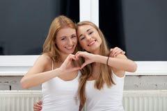 Due migliori amici Fotografia Stock Libera da Diritti