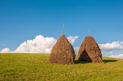 Due mucchi di fieno sulla bella estate abbelliscono in montagna carpatica Immagini Stock Libere da Diritti