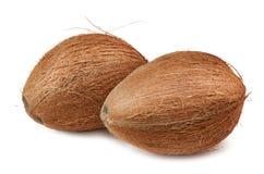 Due noci di cocco sopra bianco Fotografia Stock